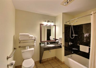 Comfort Suites Appleton Bathroom Shower Tub Granite Surround Granite Sink