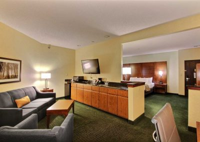 Comfort Suites Appleton King Suite Living Room Sofa Sleeper Wet Bar