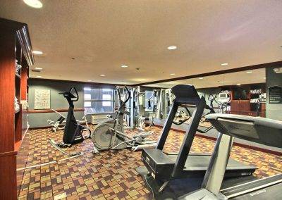 Holiday Inn and Suites Madison WI Fitness Center Treadmill Elliptical Gym Mirrors