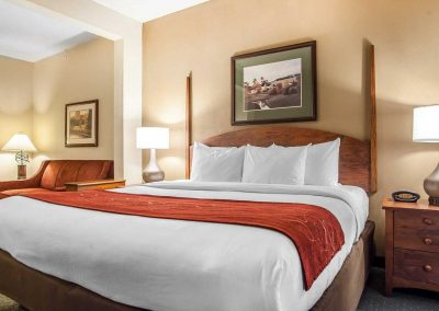 Comfort Suites Milwaukee Airport One Bed